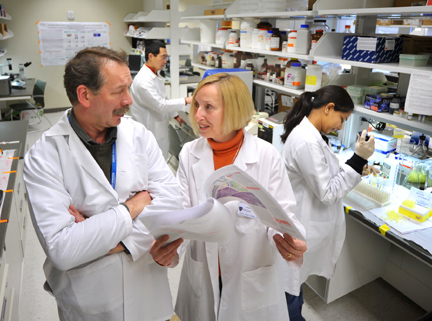 Dr. Beata Lecka-Cznerik, right, confered with research aide Piotr J. Czernik as Dr. Shilong Huang, postdoctoral fellow, right, and Vipula Petluru, predoctoral research assistant, conducted experiments.