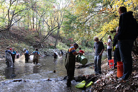 Students in the ecology lab class sampled the Ottawa River on Main Campus for fish. More than 40 species of fish make their home on campus.