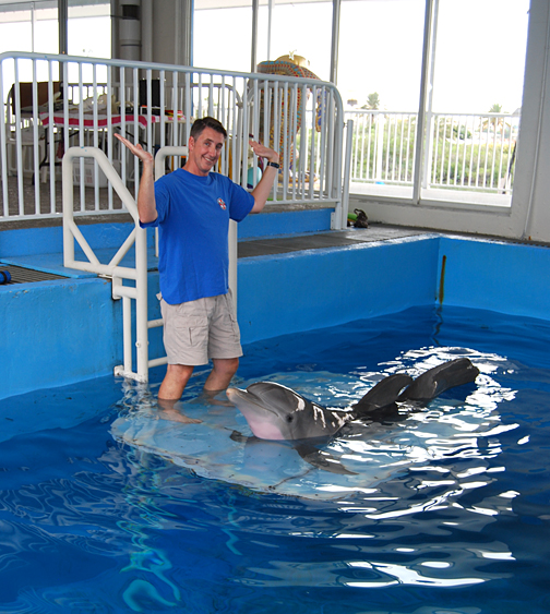 Responding to Tom Orr's training command, Winter arched her body to display her prosthetic tail at Clearwater Marine Aquarium.