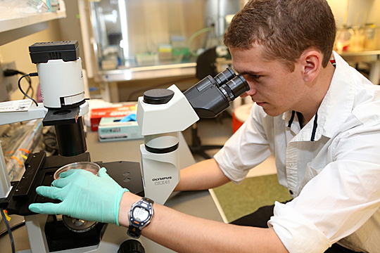 Jacob Justinger continues working in the Biochemistry and Cancer Biology Department this summer on Health Science Campus.
