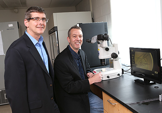 Dr. Steve Sucheck, left, and Dr. Donald Ronning are researching a more effective way to treat tuberculosis, thanks to a four-year $1.5 million grant from the National Institutes of Health.