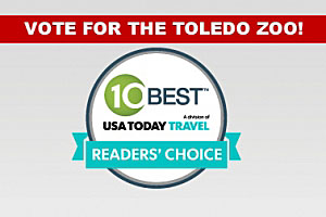 vote for toledo zoo