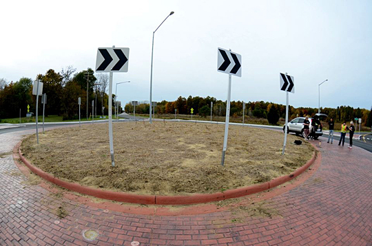 UT environmental science students will plant flowering species native to the Oak Openings region this week in the new roundabout at the intersection of Dorr Street and King Road.