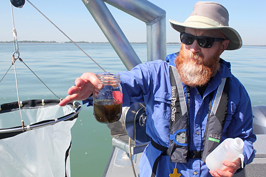 Dr. Thomas Bridgeman held a jar containing concentrated algae pulled up last spring from Lake Erie using the plankton net hanging on the side of the boat. In mid-May, the golden algae called diatoms is good for the lake, according to the researcher.