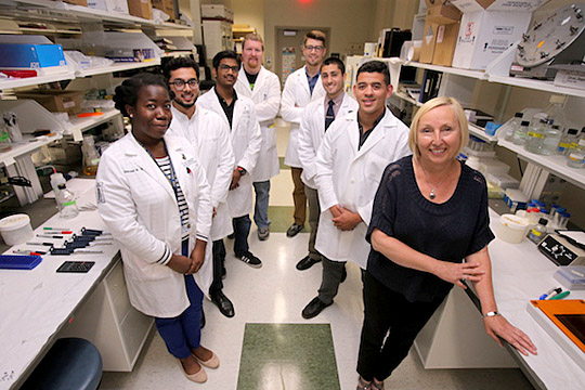 Dr. Beata Lecka-Czernik, right, posed for a photo with her team, from left, Shermel Sherman, Faiz Tausif, Amit Chougule, Lance Stechschulte, Matthew Mazur, Zachary Rotter and Ali Eltatawy.