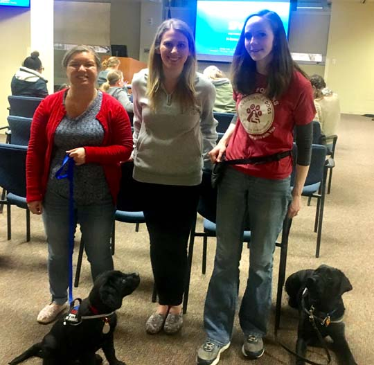 Of Persons With Disabilities Are Partnered With Service Dogs